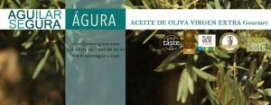 Empresa Aguilar Segura