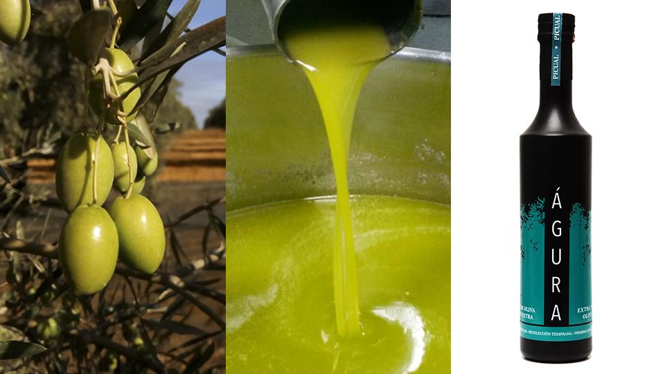 aceituna, aceite de oliva y aove águra